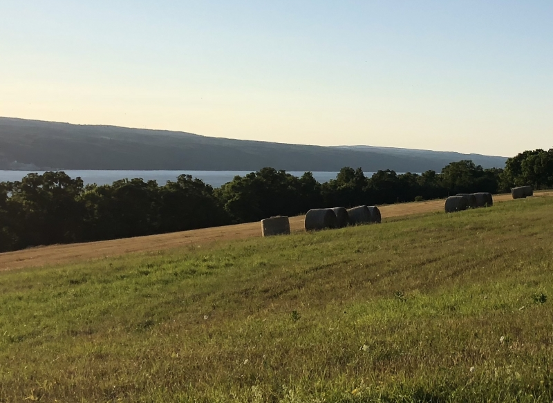 Haybales Above Watkins Glen