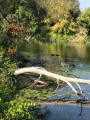 Lagoon Park in Canandaigua