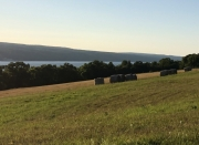 Haybales Above Watkins Glen