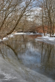 Kashong Creek in winter
