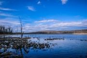 Conesus Inlet