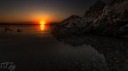 Onondaga Lake Ducks at Sunset