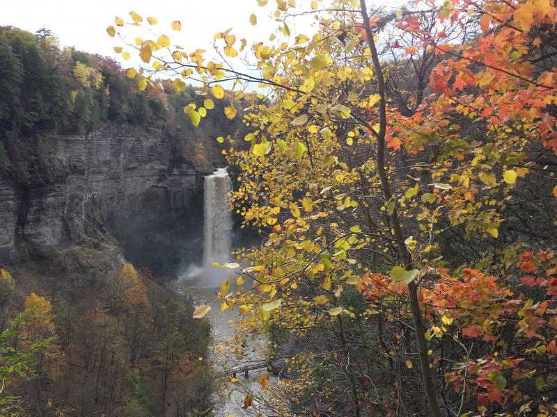 Taughannock Falls Autumn