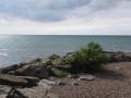 Webster Park. Photo by Melissa White