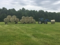 Farm Summer