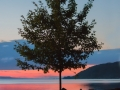 Klute Park Sunset
