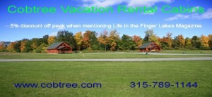 Cobtree Vacation Rental Cabins
