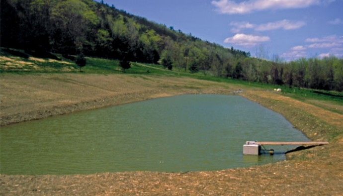 The rural pond life in the finger lakes for How much does it cost to build a fishing pond