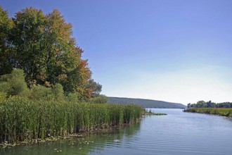Part of the 16-acre Townsend-Grady Wildlife Preserve, which includes more than 1,400 feet of frontage on Sugar Creek, can be seen on the left side in this photo. Keuka Lake lies in the distance. The museum will front the the west side of Sugar Creek, farther away from the Keuka Lake shoreline.