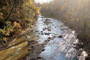 Creek Days