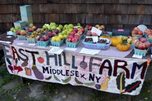 Folk Art Guild Open House and Apple Festival