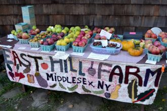 The Apple Festival during the Folk Art Guild Open House has become a destination. There will be local musicians playing in the yard all during both afternoons. Hear the lineup on October 8 and 9, 11:00 a.m. to 5 p.m. both days.