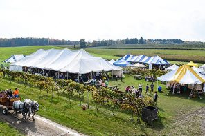 The 27th Annual Hunt Country Harvest Festival