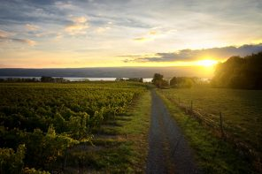 Fulkerson Winery Will Host a Night of Finger Lakes Literature