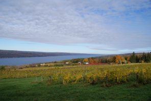 Land Trust Receives State Grant Funding to Protect Finger Lakes Farmland