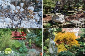 The Art of the Four Seasons Garden