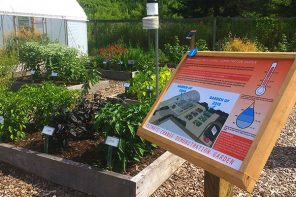 Climate Change Gardens brings plants back to the future