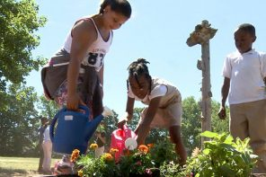 School Garden Grants are Back!