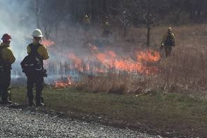 Prescribed Burn Coming to Finger Lakes National Forest