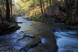 Land Gift Helps Protect Ithaca's Drinking Water