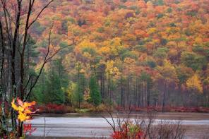 Favorite Hikes on the Finger Lakes Trail