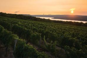 Wineries & Wine – A Finger Lakes Experience