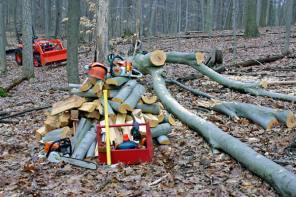 Cutting and Splitting Firewood
