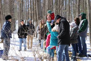 Maple Fest! Comes to Cayuga Nature Center
