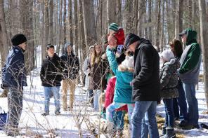 Maple Fest! Comes to Cayuga Nature Center