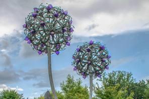 Giant Flower Towers Over Cornell Botanic Gardens