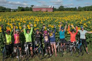 Free rides in sunflower field end Sunday