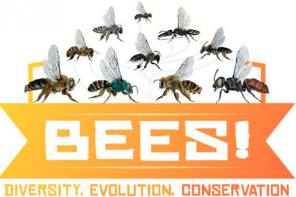 New exhibit on the incredible world of Bees! now open at the Museum of the Earth