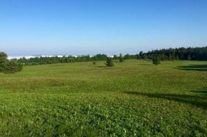 Public Comments Welcomed for Grassland Enhancement Project