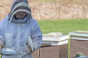 Do beekeepers practice social distancing?