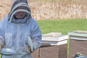 Do beekeepers practice social distancing?