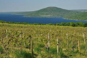 LAND TRUST ACQUISITION PROTECTS FORESTED PROPERTY ABOVE CANANDAIGUA LAKE