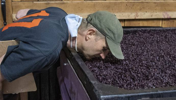 LITFL: Smelling the grapes at Ventosa Vineyards and Atwater Vineyards