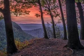 Dansville ArtWorks Solo Gallery features photographer Dick Thomas