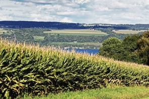 STUDY HIGHLIGHTS THREAT TO FINGER LAKES FARMS