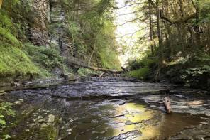 LAND TRUST OPENS NEW BOTSFORD NATURE PRESERVE IN KEUKA LAKE WATERSHED