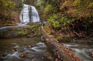 FINGER LAKES LAND TRUST ACHIEVES MAJOR MILESTONE OF 25,000 ACRES CONSERVED FOREVER