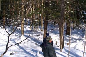 Central New York Land Trust Secures $80,000 Grant
