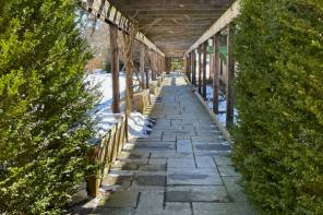 A Wintry Visit to Cornell Botanical Gardens