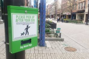 City and Downtown Ithaca Alliance Makes Downtown More Pet Friendly