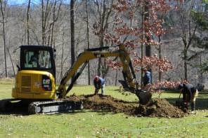 Sapling of Historic Anderson Oak Returns to Glen Iris Lawn at Letchworth State Park