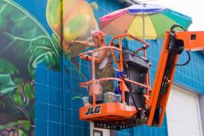 Cortland Mural Kicks off this week at Main Street Farms