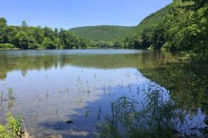 Land Trust Helps Protect Chemung River