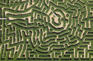 Corn Maze Opens This Weekend