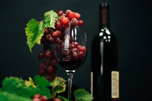 Cheers! Wine's red grape pulp offers nutritional bounty